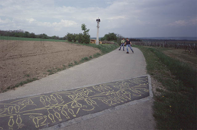 katharina struber, project for the gottfried von einem wine trail in maissau
